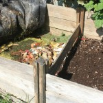 5 TIPS ON CREATING A COMPOST PIT